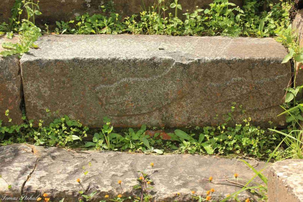 Vytesaná anakonda na jednom ze schodů uvnitř chrámu. Foto: T. Stěhule