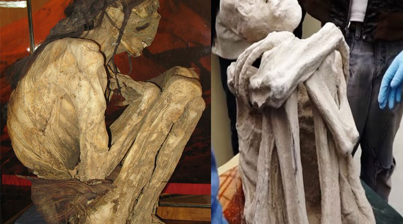 Porovnání klasické mumie z Atacamy s falešnou mumií Maussana.