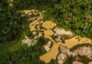 Brazílie: Prezident zrušil platnost dekretu, který otevíral Amazonii těžařům