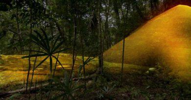 Laserové skenování vguatemalské džungli odhalilo pozůstatky mayské megapole!