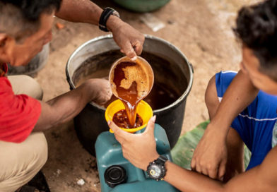 Zneužívání ayahuascy je ohrožením odkazu předků