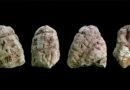 Záhada kamenů otce Nazaria