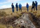 Fosilní strom nalezený vPeru přinesl nečekané zjištění